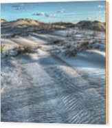 Coquina Beach, Cape Hatteras, North Carolina Wood Print