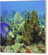 Coral Head Wood Print