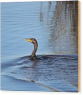 Cormorant In The Marsh Wood Print