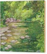 Coromandel Creek Wood Print