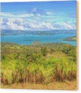 Costa Rica Landscape Wood Print