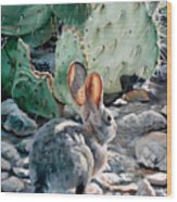 Cottontail Sunrise Wood Print