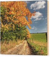Country Road And Autumn Landscape Wood Print