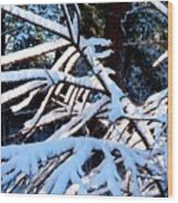 Country Solitude Wood Print