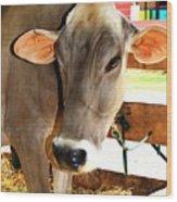 Cow 2 Wood Print