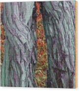 Cowboy Chaps Wood Print