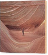 Coyote Buttes North Wood Print