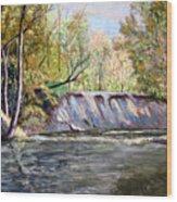 Creek Bank Wood Print