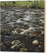 Creek, Smoky Mountains, Tennessee Wood Print
