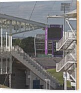 Cricket Ground Southampton Wood Print