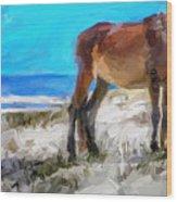 Cumberland Pony Wood Print