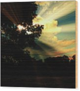Cumulus Cloud At Dusk, Tree Silhouettes Wood Print
