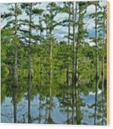 Cypress Grove Wood Print