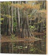 Cypress Trees In Caddo Lake Wood Print