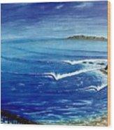 Dana Point 1950s 1 Wood Print