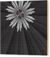Starbright Wood Print