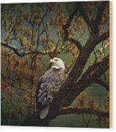 Dawn's Early Light Wood Print