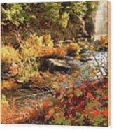 Dead River Falls  Marquette Michigan Wood Print