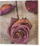Dead Rose Wood Print