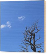 Dead Tree And Two Clouds Wood Print