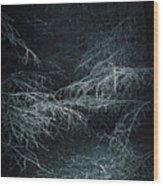 Deep In Woods Wood Print