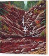 Deepwoods Cascade Wood Print