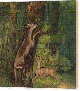 Deer In The Forest, 1868 Wood Print