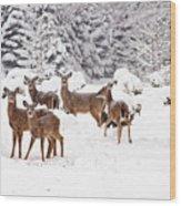Deer In The Snow Wood Print
