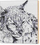 Deer Tiger Wood Print
