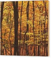 Delicious Autumn Wood Print