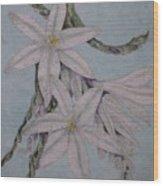 Desert Lillie Wood Print