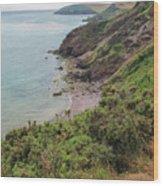 Devon Coastal View Wood Print