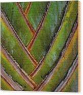 Diagonal Dance Wood Print