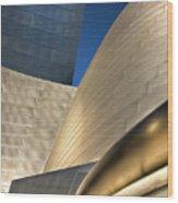 Disney Hall Abstract 2 Wood Print