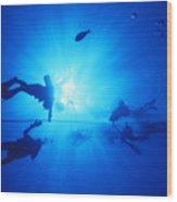 Diver On Mahi Wreck Wood Print