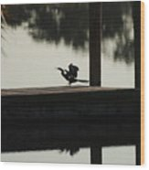 Dock Bird Wood Print
