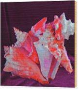 Dog Shell Wood Print by Arlin Jules