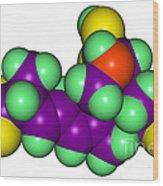 Domoic Acid Molecular Model Wood Print