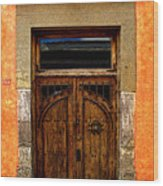 Door In Terracotta Wood Print