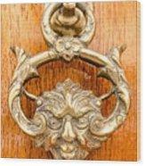 Door Knobs Of The World 54 Wood Print