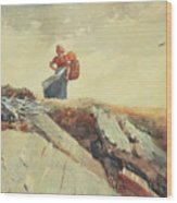 Down The Cliff Wood Print by Winslow Homer