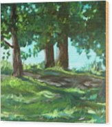 Dreaming On Fellows Lake Wood Print
