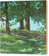 Dreaming On Fellows Lake Wood Print