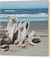 Driftwood On Beach Wood Print