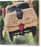 Dumb And Dumber To 2014  Wood Print