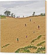 Dune Climb In Sleeping Bear Dunes National Lakeshore-michigan Wood Print