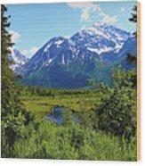 Eagle River- Alaska Wood Print