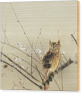 Early Plum Blossoms Wood Print
