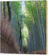 Earth Moments Gallery I Wood Print