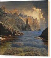 Earthsea Wood Print